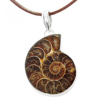 Brown Ammonite Silver Pendant- Extra Large